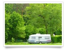Forêt autour du Camping